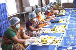 The Akshaya Patra Foundation Serves 77 Mn Meals across India