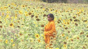 Axis Bank CSR Report: Creating Sustainable Livelihoods Across India