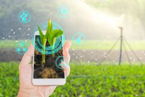 Nokia and Vi CSR initiative Introducing IoT in Agriculture in India