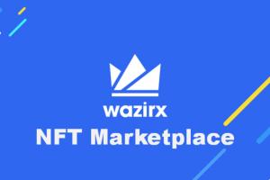 WazirX announces India's 1st NFT marketplace amid crypto boom